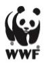 Logo WWF Brasil